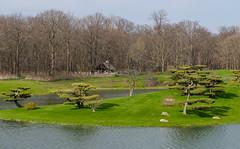 Spring in Chicago Botanic Garden (Lena and Igor) Tags: travel botanical garden us usa illinois spring japanise treeswater pond dslr nikon d7000