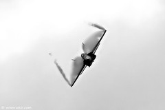 Spanish Air Force F/A-18 Hornet RIAT 2009 (xnir) Tags: tattoo del canon photography eos israel is spain photographer force aircraft aviation air royal spanish international hornet boeing douglas aire 2009 nir literally mcdonnell fa18 ejrcito  f18a 100400l benyosef 100400 xnir  123tempxnir photoxnirgmailcom