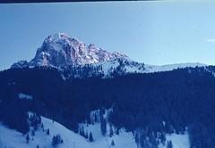Scan10512 (lucky37it) Tags: e alpi dolomiti cervino