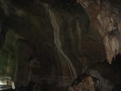 Cave of bats @ Mangrove Tour, Langkawi by pankaj.batra