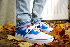 Parra Vans (stephg74956) Tags: leaves sneakers vans parra patta