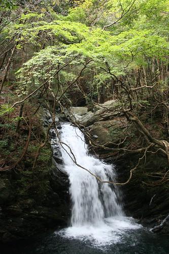 紅葉の白倉峡(その4)