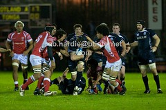 ROBH5203 (Rob vRS) Tags: tonga rugbyunion scotlanda