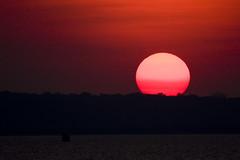 Que seja sob... (Luiz C. Salama) Tags: sunset pordosol brazil brasil manaus pds amazonia rionegro