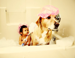 every gal deserves a sPAW day! heh. (Kelly West Mars) Tags: family pink portrait dog baby silly cute vintage groom soap bath toddler funny child bubbles retro wash labradorretriever spa suds loofah showercaps nikond80 florabellaactions