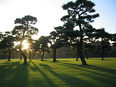 "Land of the ""Setting"" Sun? (AJ Brustein) Tags: sun tree green grass japan set canon aj tokyo palace imperial   matsu   kokyo ixy  naturesfinest brustein"