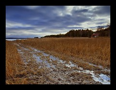washington Island Mud (AGoldsmithPhotography) Tags: grass wisconsin island photo olympus tall blending washingtonisland e510 anawesomeshot updatecollection