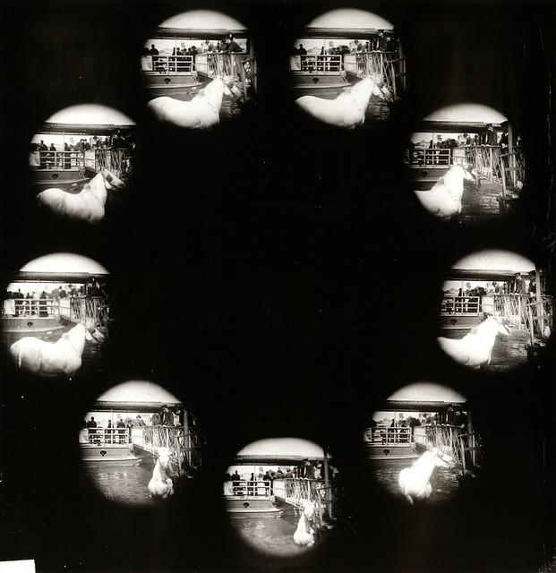 Entre photographie instantanée et cinéma: Albert Londe