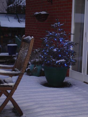 December snowfall 2009 001