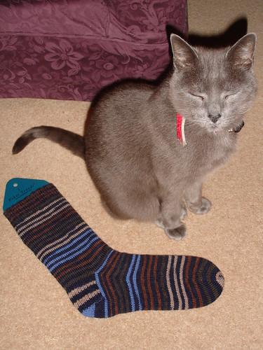 Mr Josiekitten's Xmas socks day 2 WIP 004