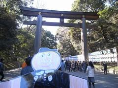 Flat Everett Visits Meiji Jinguu