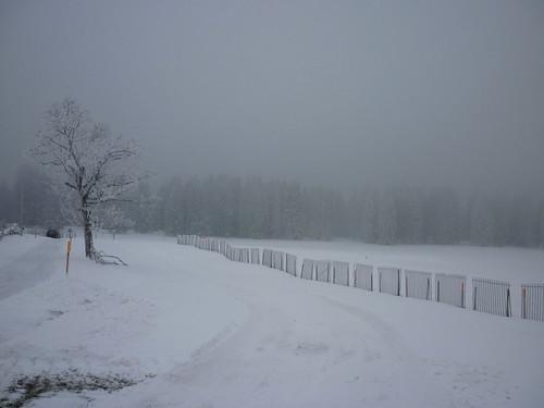 température glaciale
