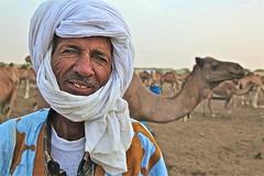 selling a yes to your no .. (Ferdinand Reus) Tags: africa man sahara animal desert market sale transport business camel local turban salesman bedouin mauritania afrique sahel mauritanie dromedaris  nouakchott