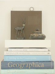 Mrs Deer + books (Iro {Ivy style33}) Tags: blue brown ikea vintage books deer woodenbox readingcorner combonibili minilackshelf