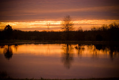 Sunrise on the pond (Dexter1119) Tags: specialpicture anawesomeshot