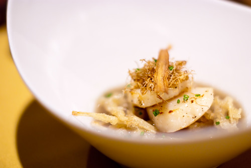 Sauteed Scallops with Burdock Sauce