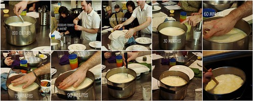 Making Of Rennet Cheese