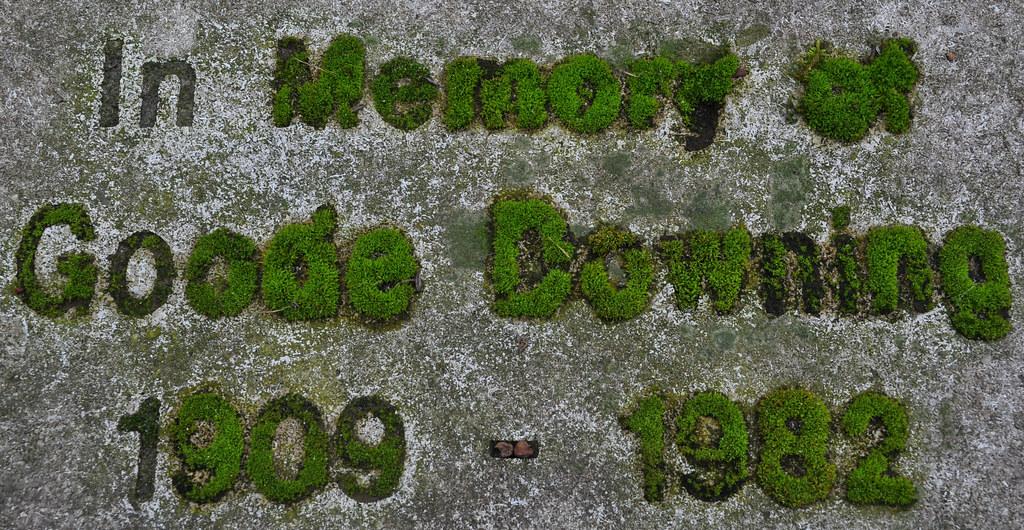 Mossy Memorial