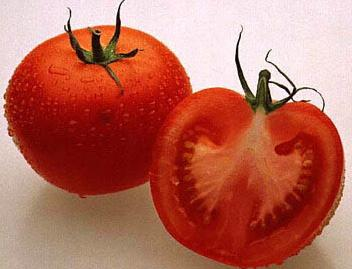 cut_tomatoes_stockfood