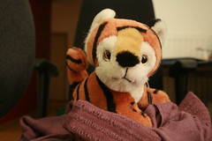 Chc mng nm mi! (jepoirrier) Tags: animal toy stuffed vietnamese tiger newyear plush vietnam  cudly tt chcmngnmmi ttnguynn