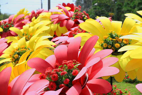 Giant flowers made of flowers, Tet HCMC