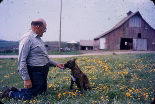 Man, puppy, barn