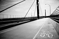 CMO Bridge Deck 8 (DP-Studios) Tags: bridge poco portcoquitlam cmo
