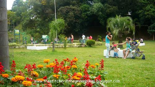 Parque dos Macaquinhos/Monkey's Park
