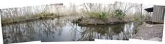 swamp 7 (aranreo) Tags: island scout tkf karankawa