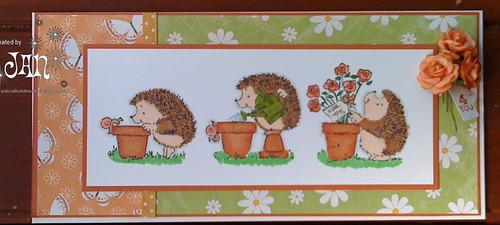 Gardener Hedgie