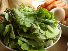CSA Winter Share 7: Mixed Greens
