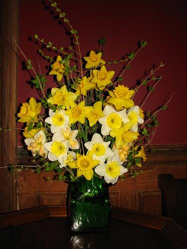daffodils for church