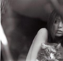 dangerous animals. (anna☆morosini) Tags: cinema
