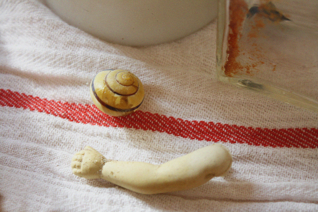 doll arm and shell
