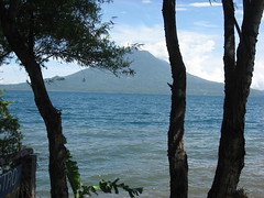 Lake Atitlan through the trees