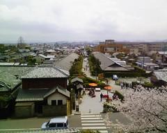 桜の御城番屋敷 #matsusaka