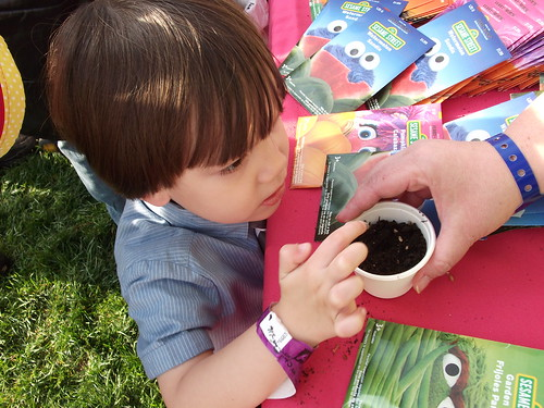 Jack learning how to plant seeds