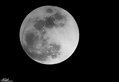 (Aljazi Al-Akoor) Tags: moon canon lens full 75300 d550 aljazi