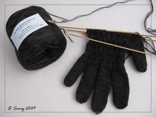 fingerhandschuhe2009.2a