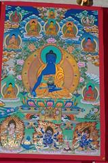 Visit to Tibetan Art Gallery (treasuresthouhast) Tags: china art painting tibet tibetan 中国 lhasa thangka tar 西藏 艺术 拉萨 藏