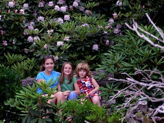 family resting in the rhododendron (Mountain Lake Hotel) Tags: hiking backpacking crosscountryskiing appalachiantrail trailrunning familyadventurerecreation virginiafamilygetaways ecofriendlysustainabledestinations wildlifeviewinginvirginia allinclusiverecreation