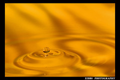 WATER MUSHROOM (xibbs) Tags: sculpture art water gold golden drops s
