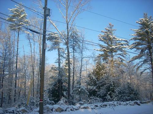 Snowy Sunday 7