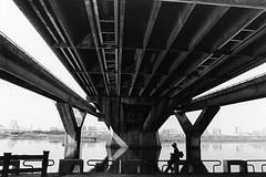 橋下觀-2008-大稻埕河岸.jpg