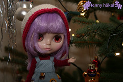 Effi in my parents christmas tree