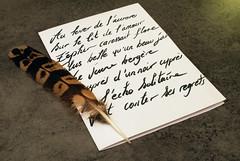 Jean-Jacques ROUSSEAU (Rom-1-) Tags: 50mm nikon romance poeme francais thrse panthon poesie rousseau jeanjacques auteur 1778 ermenonville 1712 jeanjacquesrousseau d80 levasseur