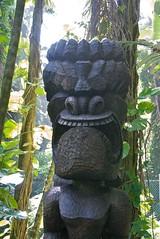 hawaii-012010 123 (1)
