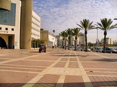 P1130246 (ilan_meir2000) Tags: israel ashdod municipality ashdodisraelmunicipality
