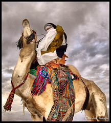 Sky is the Limit ! (Bashar Shglila) Tags: sky sahara colors clouds outfit desert camel tribe libya tuareg ghat  libyen     lbia    libi   libiya sahran  liviya ghadamis libija           exquisiteanimals   lbija  lby libja lbya liiba livi   dirij