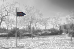 Nevada en Madrid 2010 13 (rafael-angel) Tags: 100commentgroup mygearandmepremium